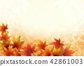가을, 단풍, 단풍나무 42861003