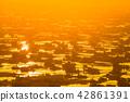 《富山県》富山の絶景・砺波平野、散居村の夕景 42861391