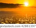 """""""富山县""""富山·砺波平原的壮丽景色,散落的村庄的夜景 42861397"""