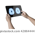 tablet display x-ray brain . 42864444