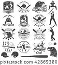 baseball, vector, sport 42865380