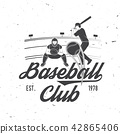 Baseball or softball club badge. Vector illustration. Concept for shirt or logo, print, stamp or tee 42865406