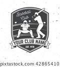 Baseball or softball club badge. Vector illustration. Concept for shirt or logo, print, stamp or tee 42865410