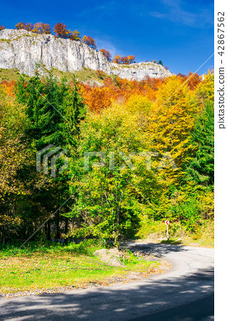rocky cliffs over the forest 42867562