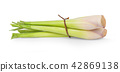 Lemon grass on white background 42869138