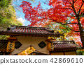 가을, 단풍, 사찰 42869610