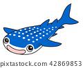 Whale shark 42869853