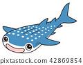 Whale shark 42869854
