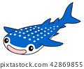Whale shark 42869855