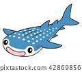 Whale shark 42869856