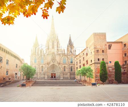 Gotic quarter of Barcelona 42878110