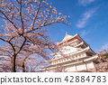 (Shizuoka Prefecture) Atami castle in the season of cherry blossoms 42884783