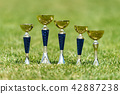 Five golden trophy in green grass 42887238