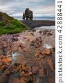 Hvitserkur is a spectacular rock in Iceland 42888441