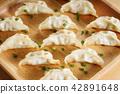 Japanese dumpling 42891648