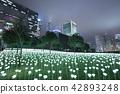 Light Rose Garden In Hong Kong City at night 42893248
