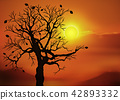 Sunset and bare trees 42893332