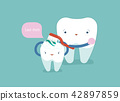 Mom is brushing body of tooth, dental concept. 42897859