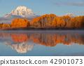 autumn, grand, teton 42901073