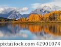 autumn, grand, teton 42901074