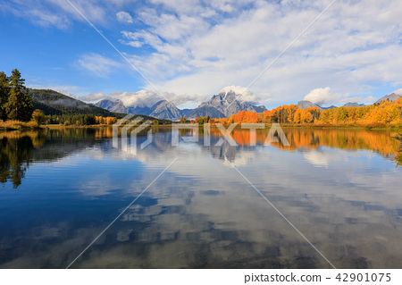Teton Fall Reflection Scenic 42901075