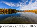 autumn, grand, teton 42901077