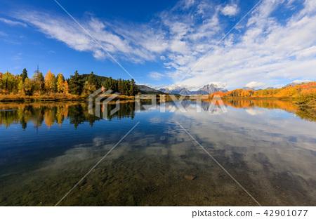 Teton Fall Reflection Scenic 42901077