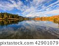autumn, grand, teton 42901079