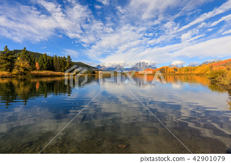 Teton Fall Reflection Scenic 42901079