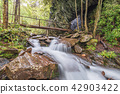 Cascades in the Smoky Mountains 42903422