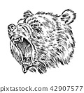 Portrait of Grizzly Bear. head of a wild animal. angry roar of a predator. Badge or emblem Vector 42907577
