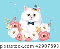 動物 貓 貓咪 42907893