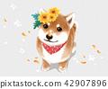 動物 可愛 狗 42907896