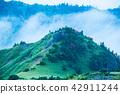 shigakogen, highlands, fog 42911244