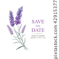 Lavender watercolor paint hand made for wedding. 42915377