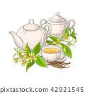 herb flower blossom 42921545