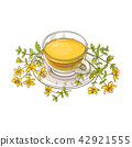 flower, herb, herbal 42921555