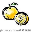 檸檬 日本柚子 水果 42921616