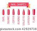 Acrylic nail shapes set. 42929738