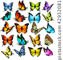 Collection of colorful butterflies 42932081
