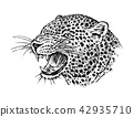 leopard animal vector 42935710