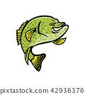 Crappie Fish Mascot 42936376