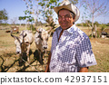 Portrait Happy Man Farmer At Work With Ox Looking At Camera 42937151
