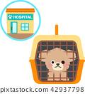 进入宠物的狗和动物医院运载 42937798