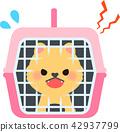 애완 동물 운반 중 짖는 작은 강아지 42937799