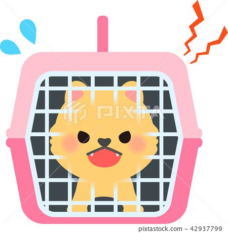 咆哮在宠物的小狗运载 42937799