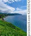 여름 미사키 샤코 탄 블루 / 홋카이도 샤코 탄 정 42939242