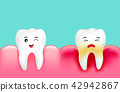 Dental plaque with inflammation and healthy tooth. 42942867