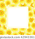 Yellow Daffodil - Narcissus Banner Card 42943361