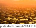 """""""富山县""""富山·砺波平原的壮丽景色,散落的村庄的夜景 42944118"""